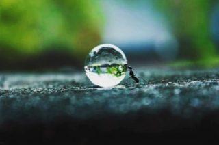 La clave para encontrar un equilibrio justo, para el surgimiento de La Paz mental en la vida…es la simplicidad🙏🏻🌷🤍